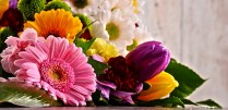 Proflowers Discount Code Free Shipping